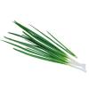Картинки по запросу зеленый лук