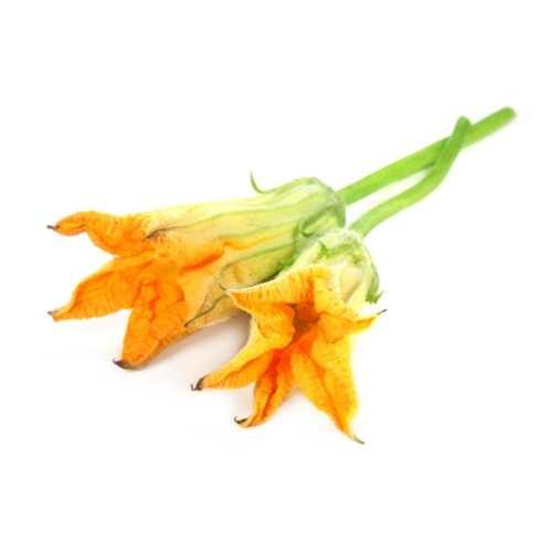 Цветы из тыквы 99