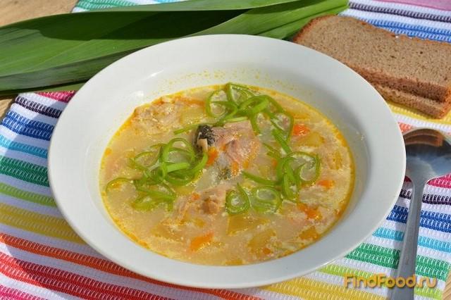 Суп из консервов скумбрии с плавленным сыром