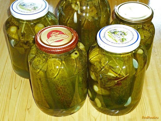 Засолка огурцов на зиму пошаговый рецепт с фото