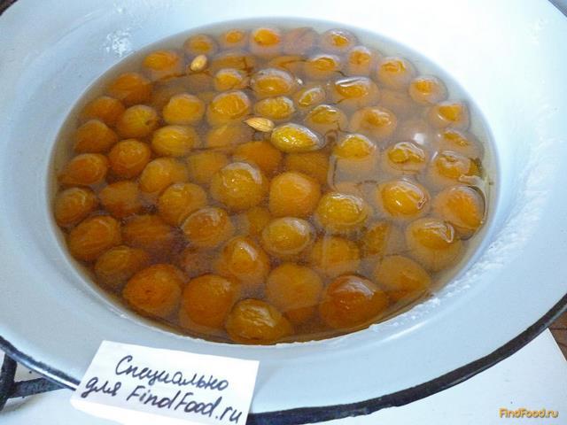Как сделать соленые абрикосовые 753
