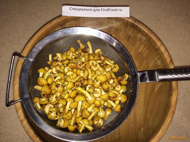 Как опята замороженные рецепты приготовления рецепт приготовления картофельной запеканки с яйцами