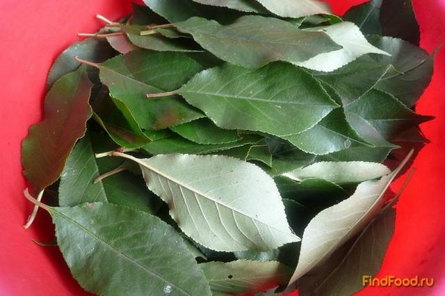 Сироп из черноплодной рябины рецепт с фото 2-го шага