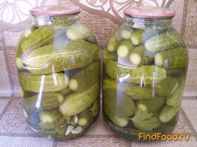 Рецепт Огурцы консервированные с чесноком рецепт с фото