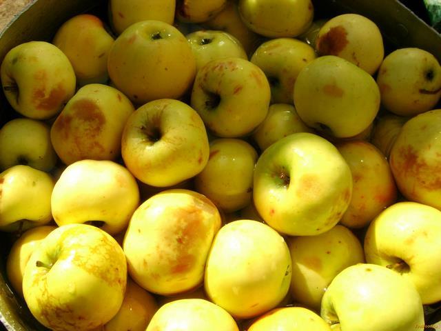 Моченые яблоки рецепт с фото 1-го шага