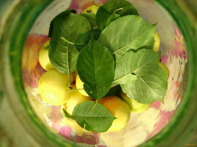 Моченые яблоки рецепт с фото 3-го шага
