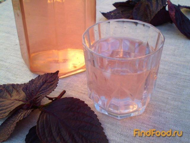 Рецепт Напиток из фиолетового базилика рецепт с фото