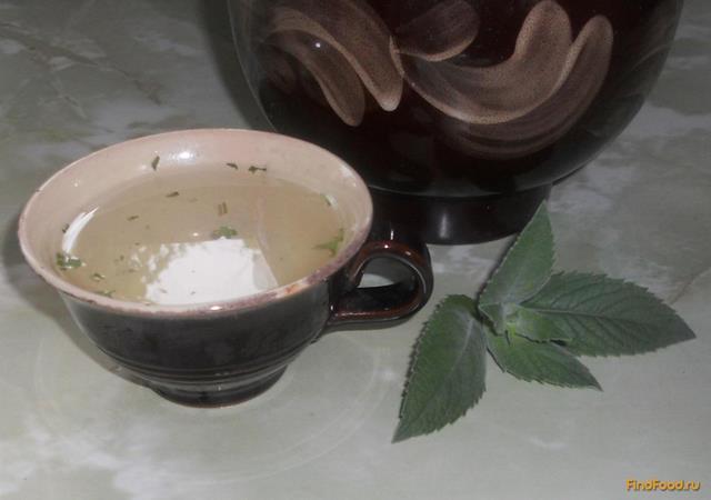 Рецепт Освежающий напиток из эстрагона и лимона рецепт с фото