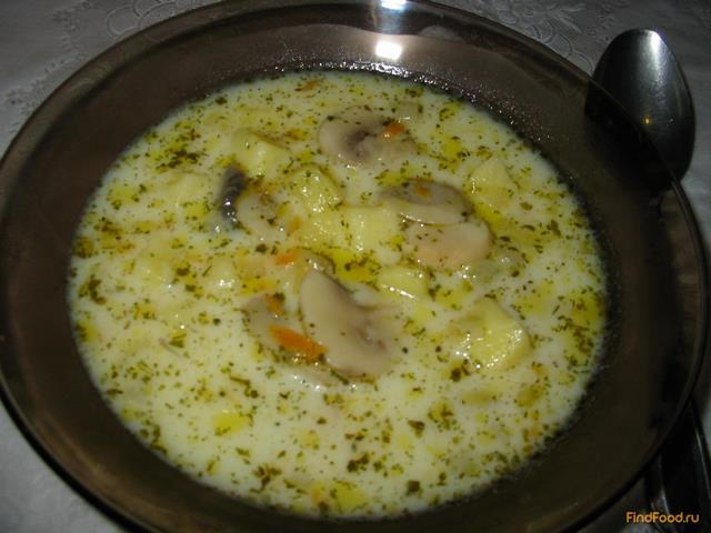 рецепт приготовления грибного супа из замороженных грибов