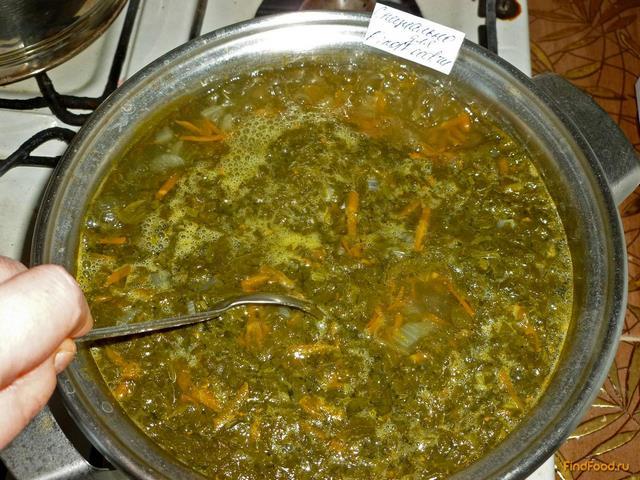 Щавелевый суп с яйцом классический рецепт с фото пошагово 33