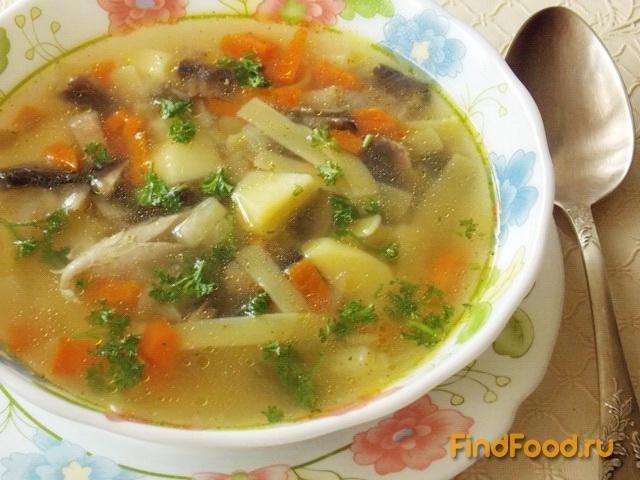 Суп с грибами рецепт с фото со свининой