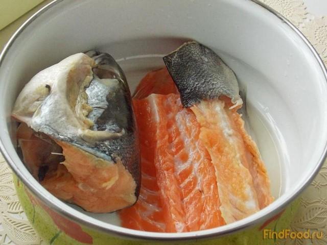 Рыбный суп из головы и хребтов семги, форели, лосося ...