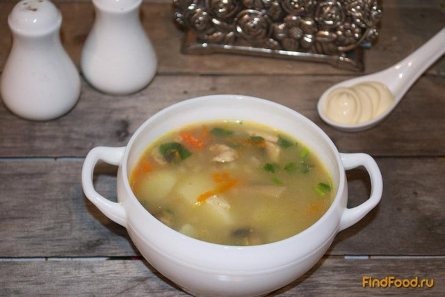 Рецепт Куриный суп с овсянкой и грибами рецепт с фото