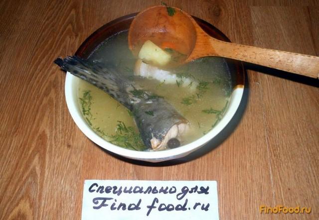 Рецепт Уха из горбуши рецепт с фото