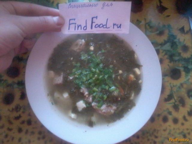 Рецепт Зеленый борщ из консервированого щавля рецепт с фото
