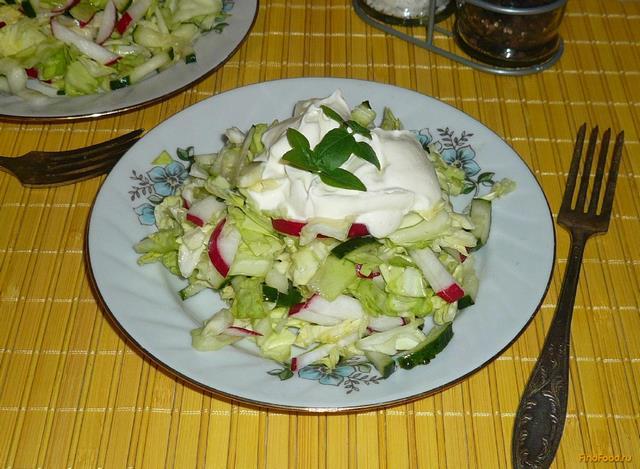 Рецепт Капустный салат с редиской и огурцом рецепт с фото