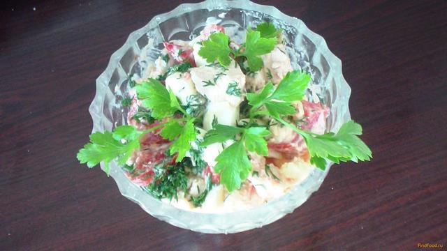 Рецепт Куриный салат с помидором рецепт с фото