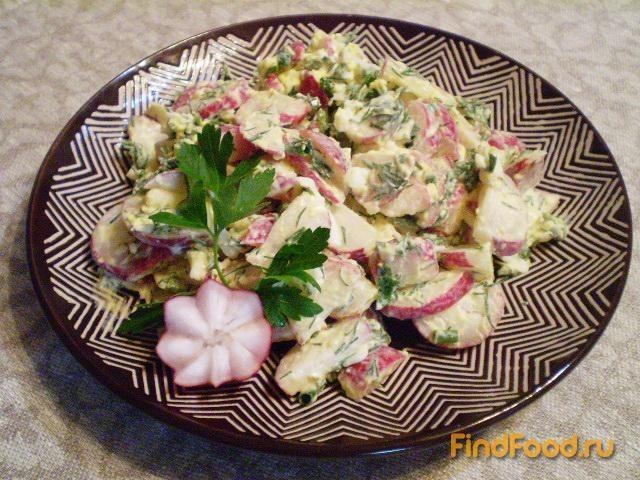 Рецепт Салат из редиса и трех видов зелени рецепт с фото