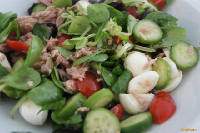 Рецепт Легкий салат с тунцом рецепт с фото