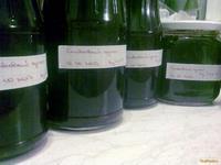 Рецепт Ароматный сливовый джем с секретом рецепт с фото