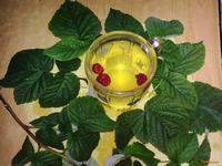 Рецепт Чай из малины рецепт с фото