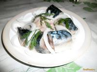 Рецепт Слабосоленая скумбрия рецепт с фото