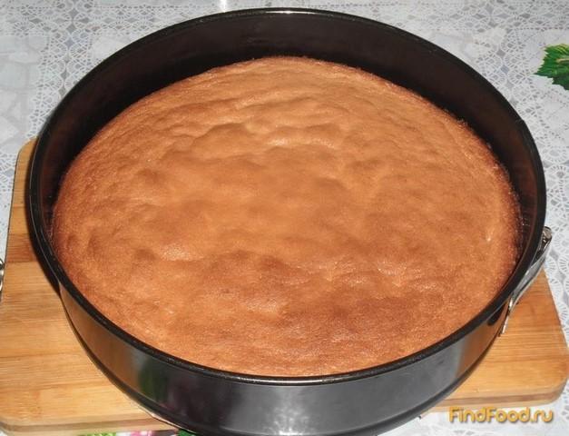 Рецепт Бисквит из 4 яиц рецепт с фото
