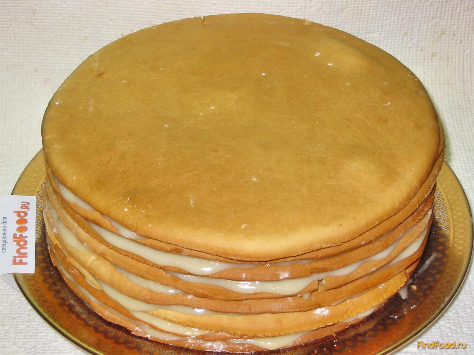 Как сделать медовый корж для торта 537