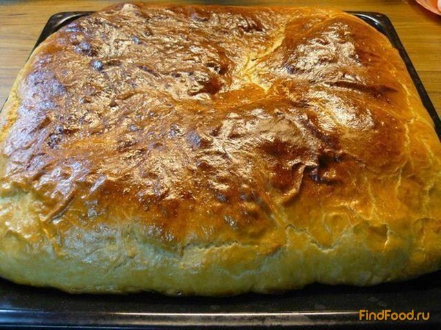 вареной рецепт рыбой с Пирог