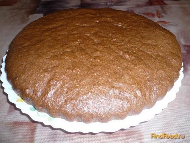 Быстрые рецепты простых тортов