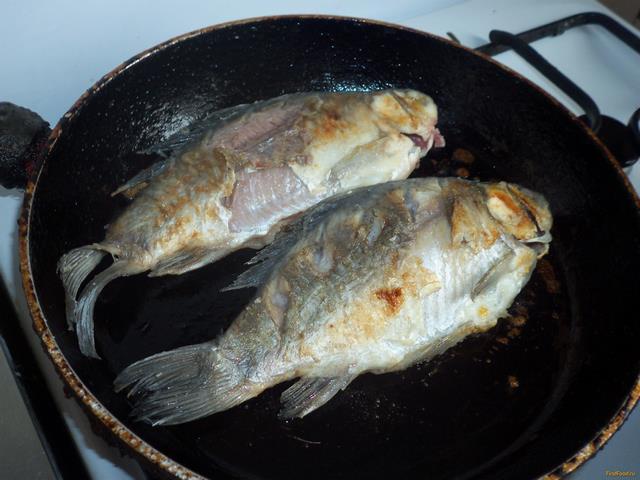 Грибы шиитаки рецепты блюд