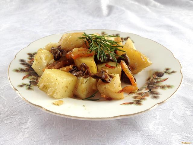 Сушеные грибы рецепты приготовления вигна рецепты приготовления на зиму консервация фото и видео