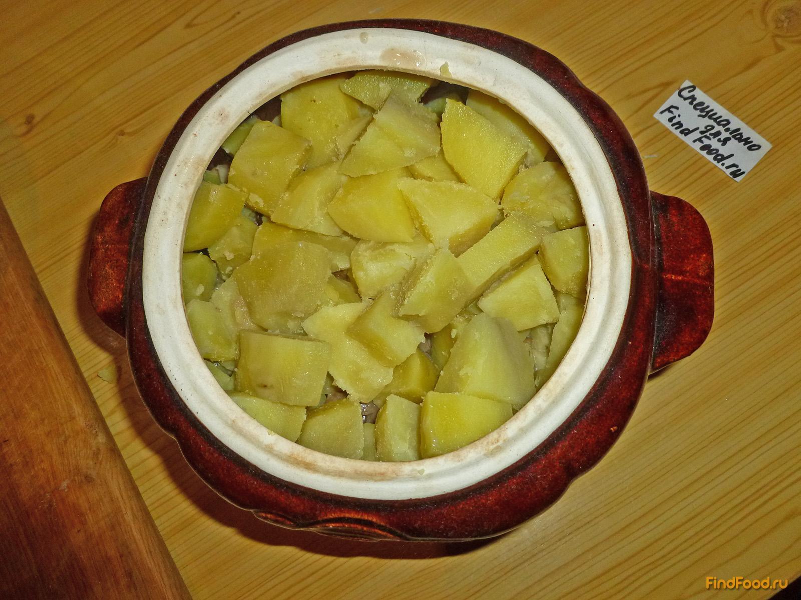 Рецепт горшочков в духовке пошагово с картофелем