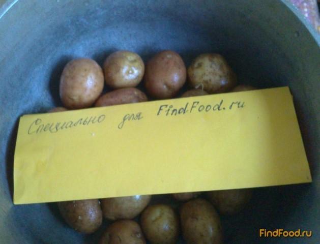 картошка в духовке рецепт с фото с приправами