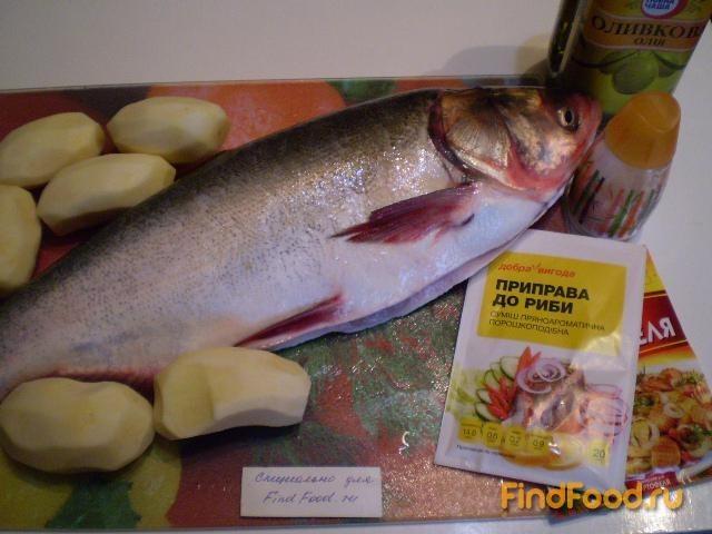 свежая рыба толстолобик купить
