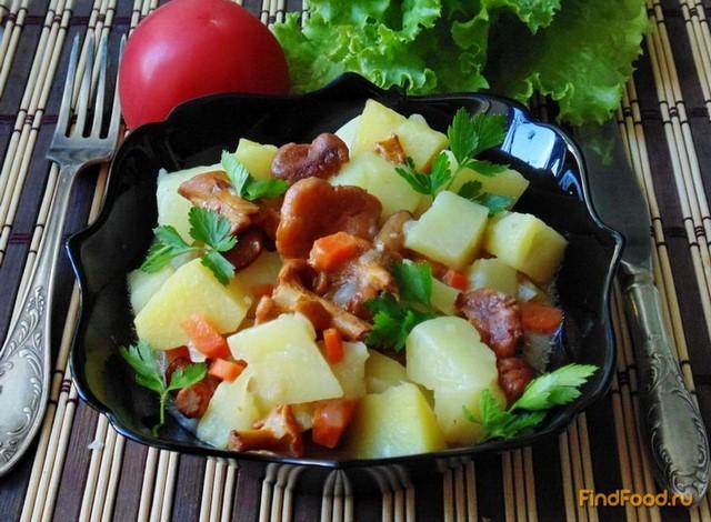 Рецепт Картофель с лисичками в сметане рецепт с фото