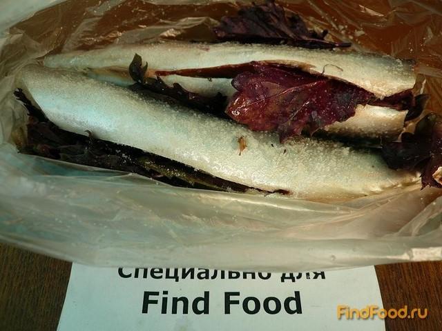 Блюда из сушеной рыбы рецепты